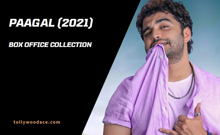 paagal box office collection