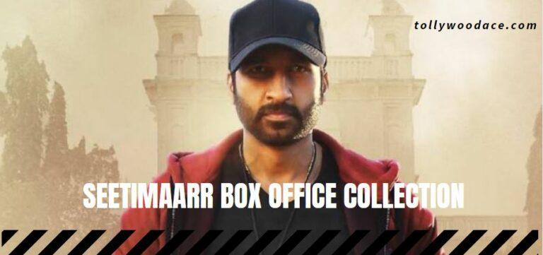 seetimaarr box office collection